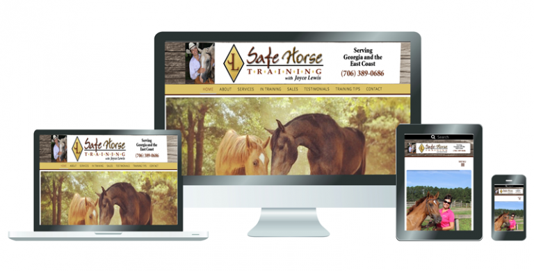 Example of Safe Horse Training website
