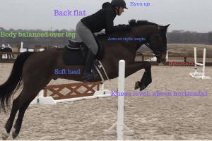 Choosing Equestrian Phtotos